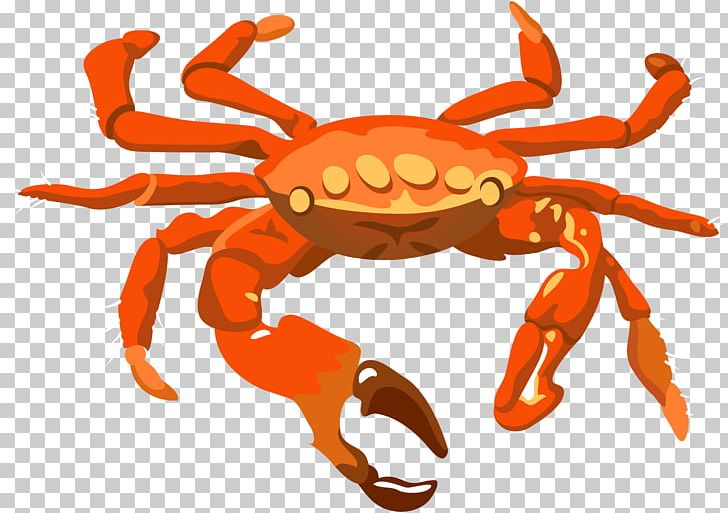 Dungeness crab png animal. Crabs clipart description