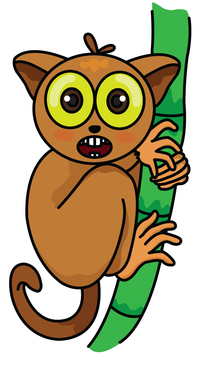 Dream clipart step by step instruction. Tarsier drawing tutorial http