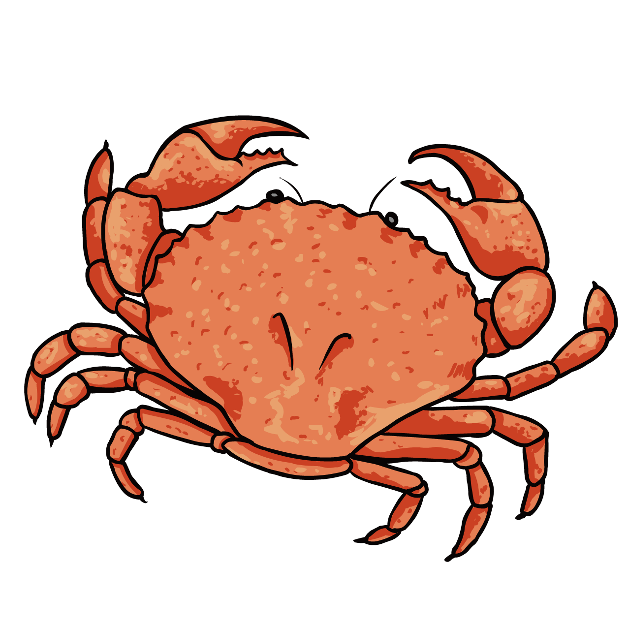 Dungeness lobster clip art. Seafood clipart king crab