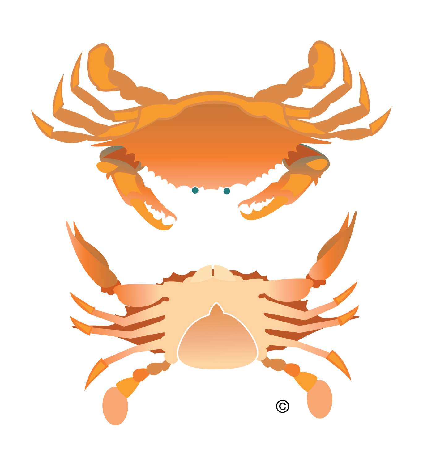 Crabs clipart orange crab. Clip art new orleans