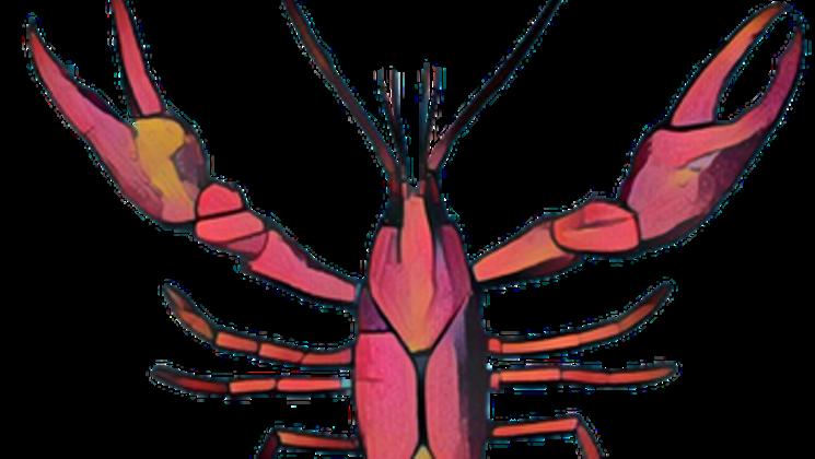 Crabs clipart symmetry. Epiphany richardson crawfish boil