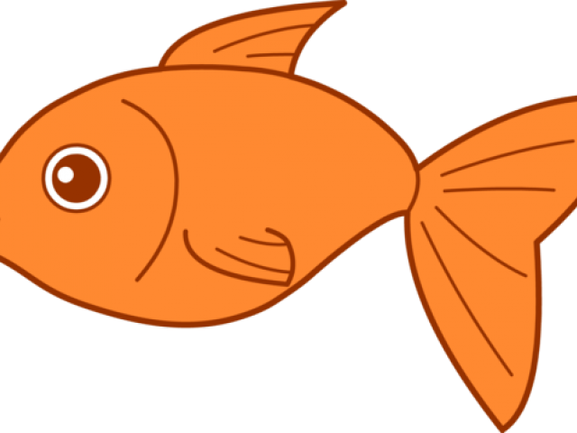 Goldfish clipart two. Png clip art vector