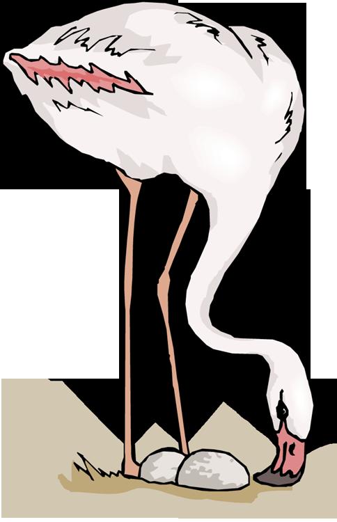 Crane clipart animal. Free flamingo