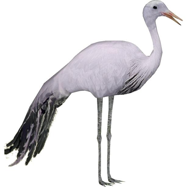 Hd png transparent images. Crane clipart blue crane