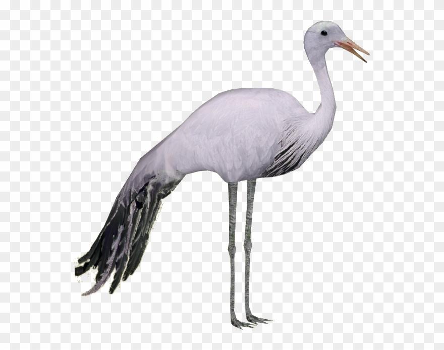 Crane clipart blue crane. Pinclipart