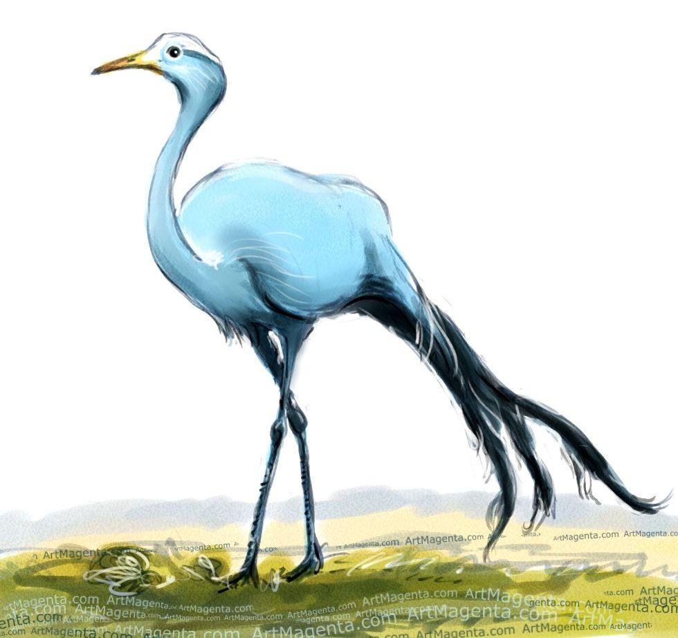 For da boids bird. Crane clipart blue crane