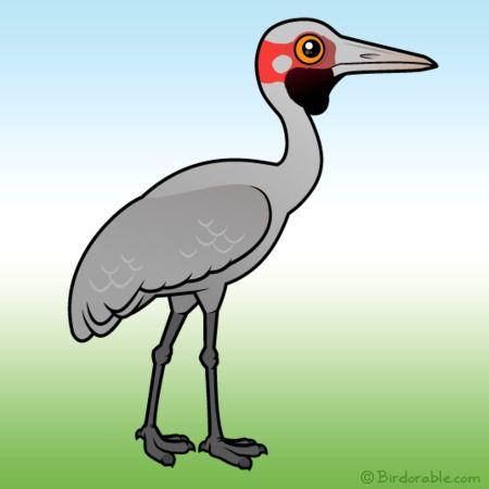 Cute birdorable in rails. Crane clipart brolga