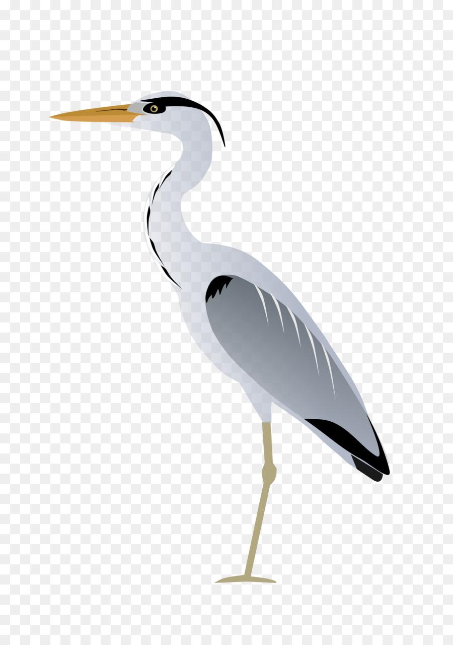 Crane clipart heron. Bird drawing stork transparent
