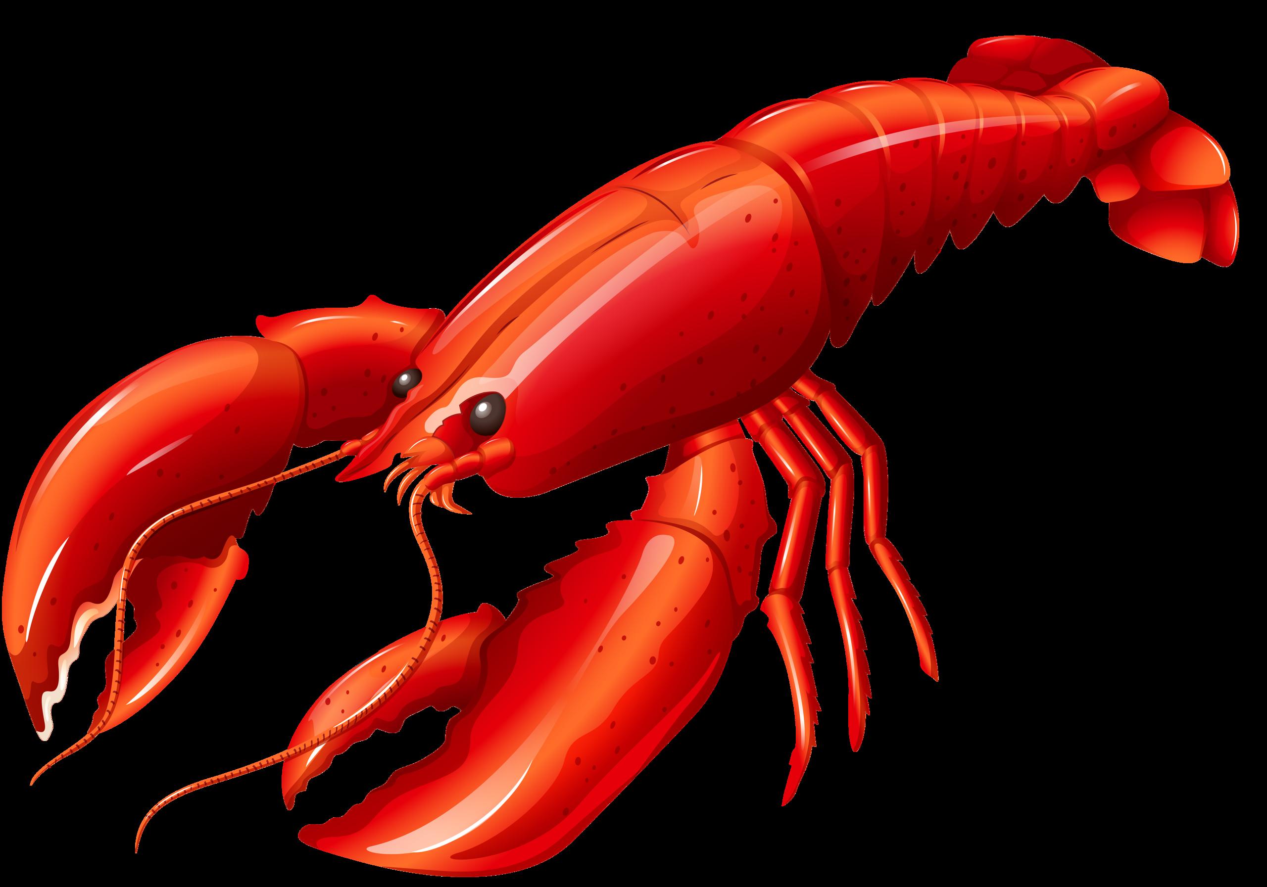 Crawfish clipart animated gif. Crayfish at getdrawings com