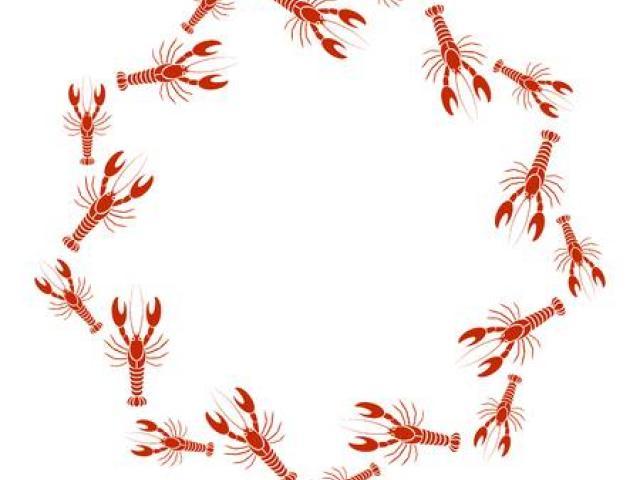 Crawfish clipart border. Free download clip art