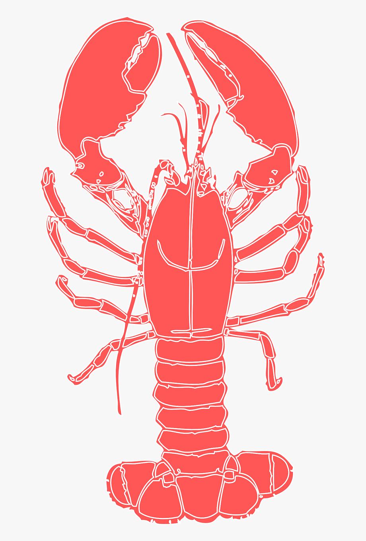 Crustacean crab crayfish png. Crawfish clipart lobster
