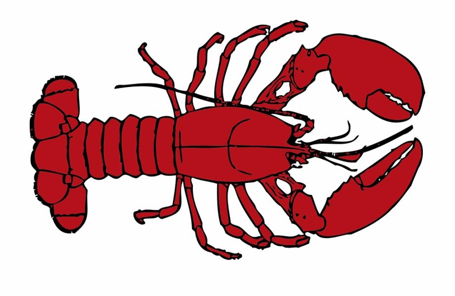 Crawfish clipart lobster. Menu highlight free png