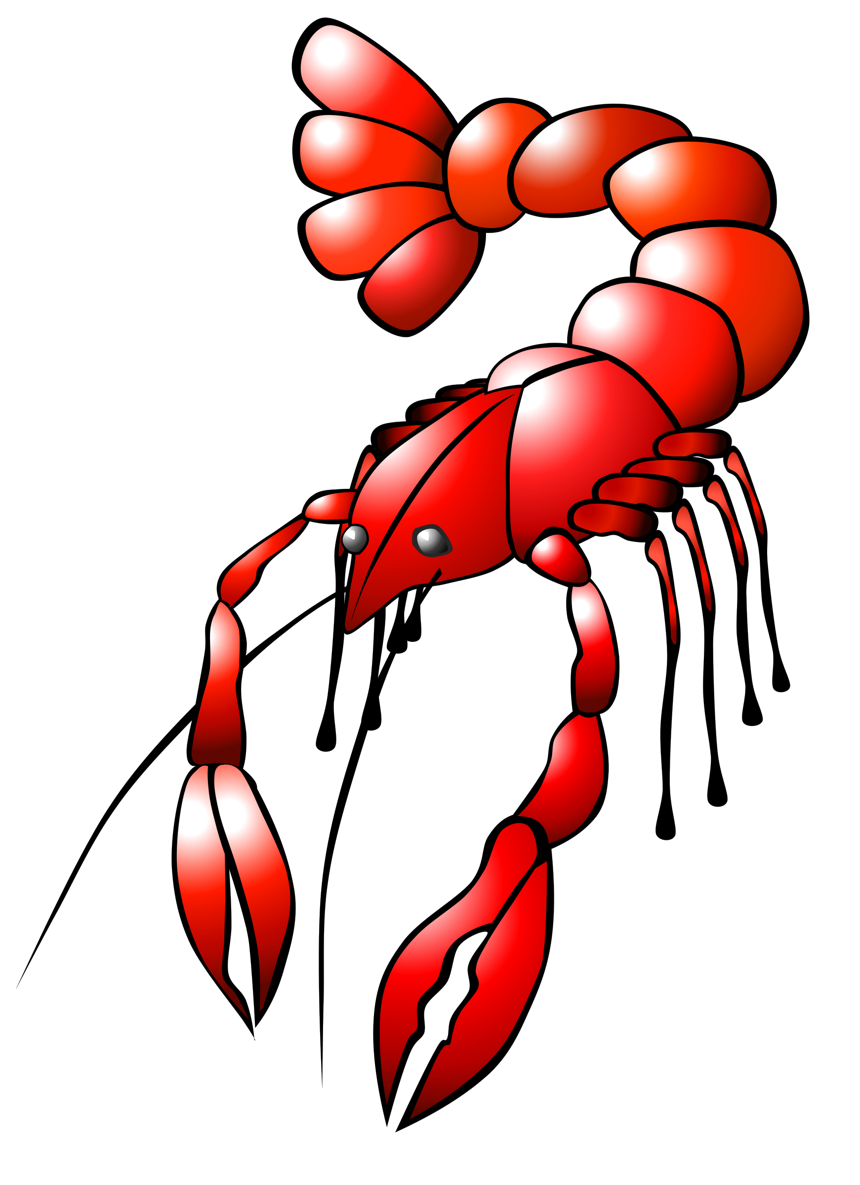 Lobster clipart animated. Crawfish big image png
