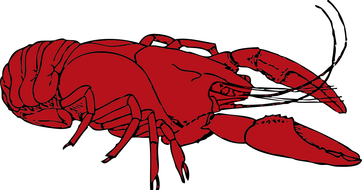 Crawfish clipart transparent background. Clip art cliparts co