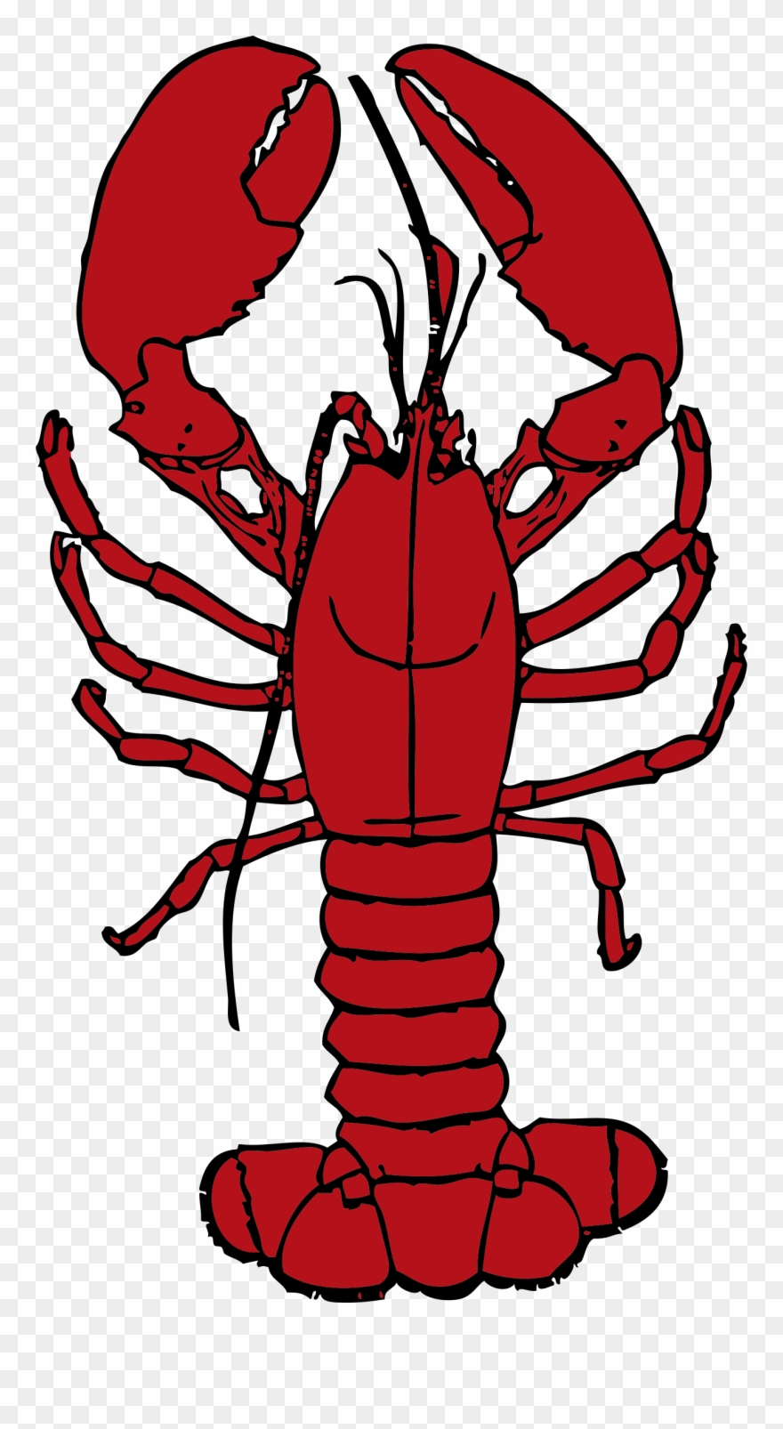 Crawfish clipart transparent background. Clip library boil lobster