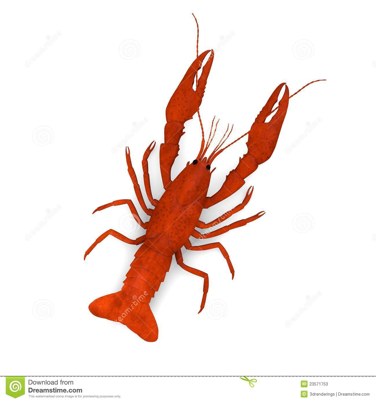 crayfish clipartlook. Crawfish clipart yabbie