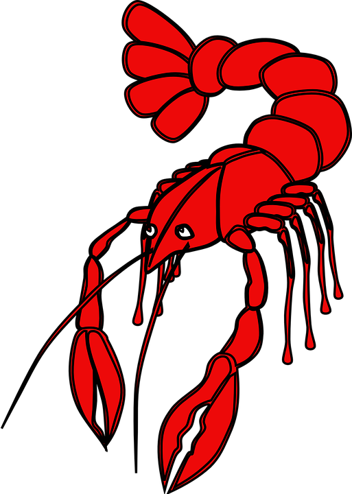 Crawfish free on dumielauxepices. Lobster clipart dancing shrimp