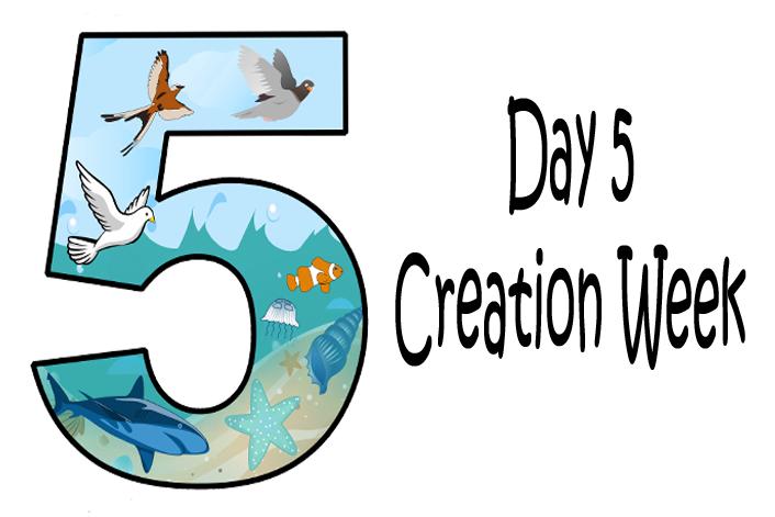 God created birds and. Creation clipart day 5