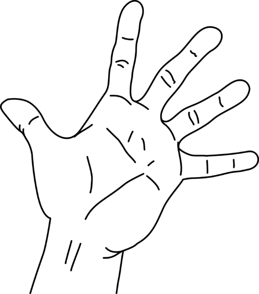 File measurements of the. Finger clipart hand span