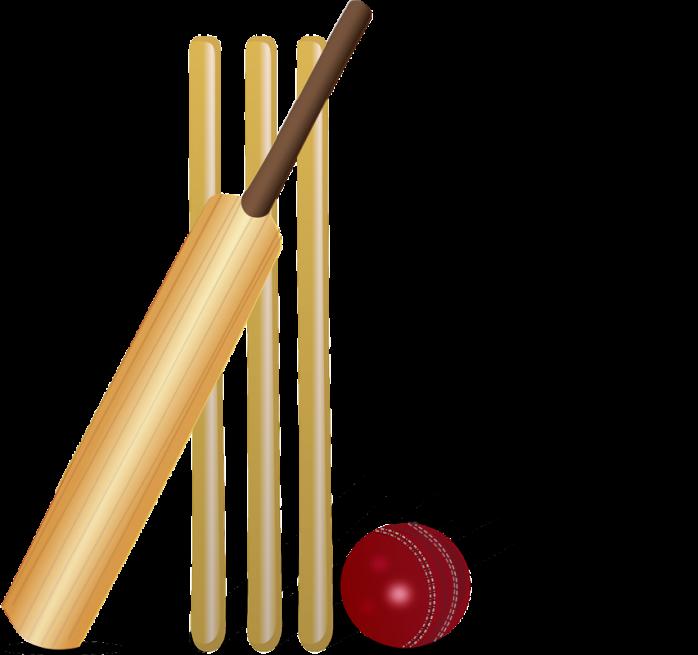 Cricket clipart border. David warner awarded allan