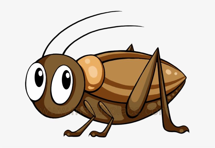 Mantis cute cartoon . Cricket clipart brown cricket insect