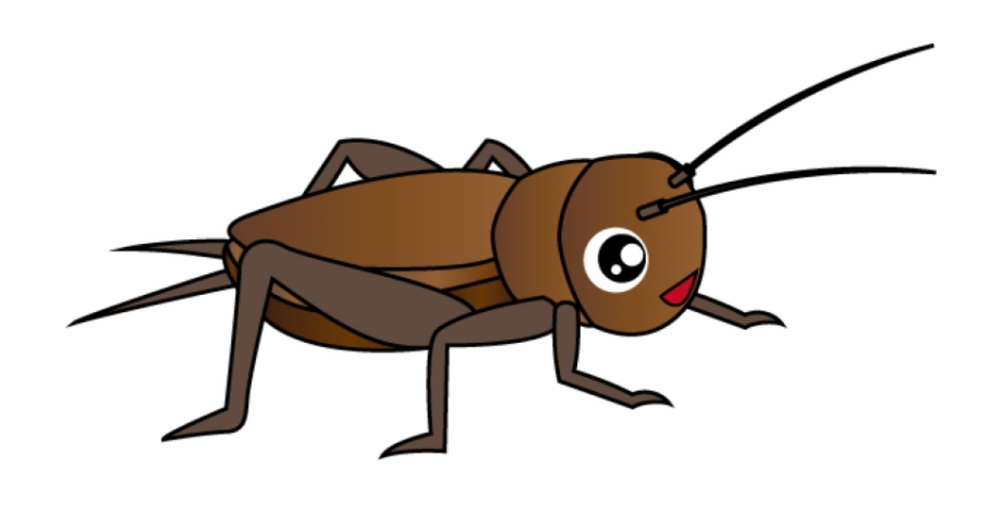 Png clip art library. Cricket clipart brown cricket insect