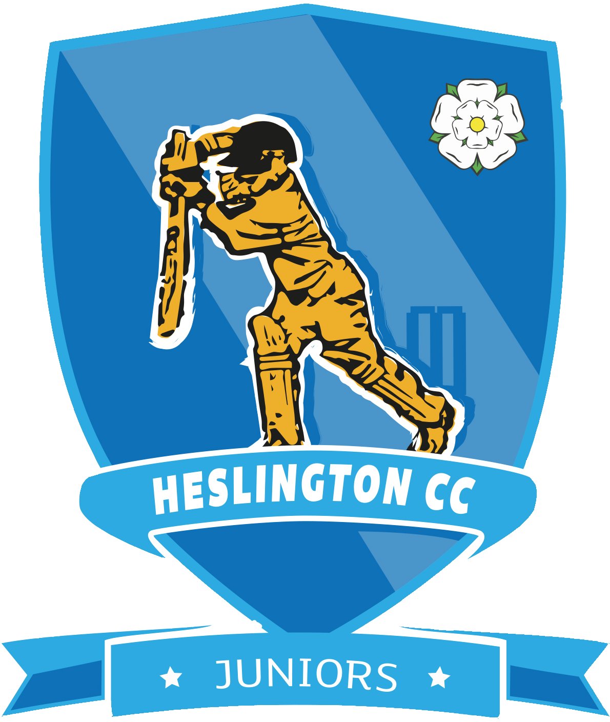 Cricket clipart cricket champion. Heslington sponsorship