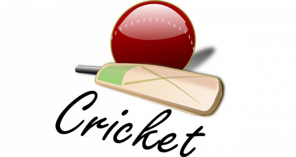 Diamond harbour junior coaches. Cricket clipart cricket club