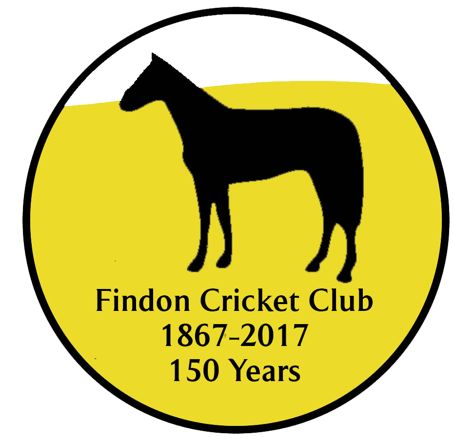 Cricket clipart cricket ground. Findon club years and
