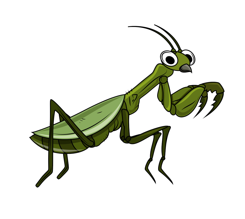 Insect clipart insect grasshopper. Cartoon clip art transprent