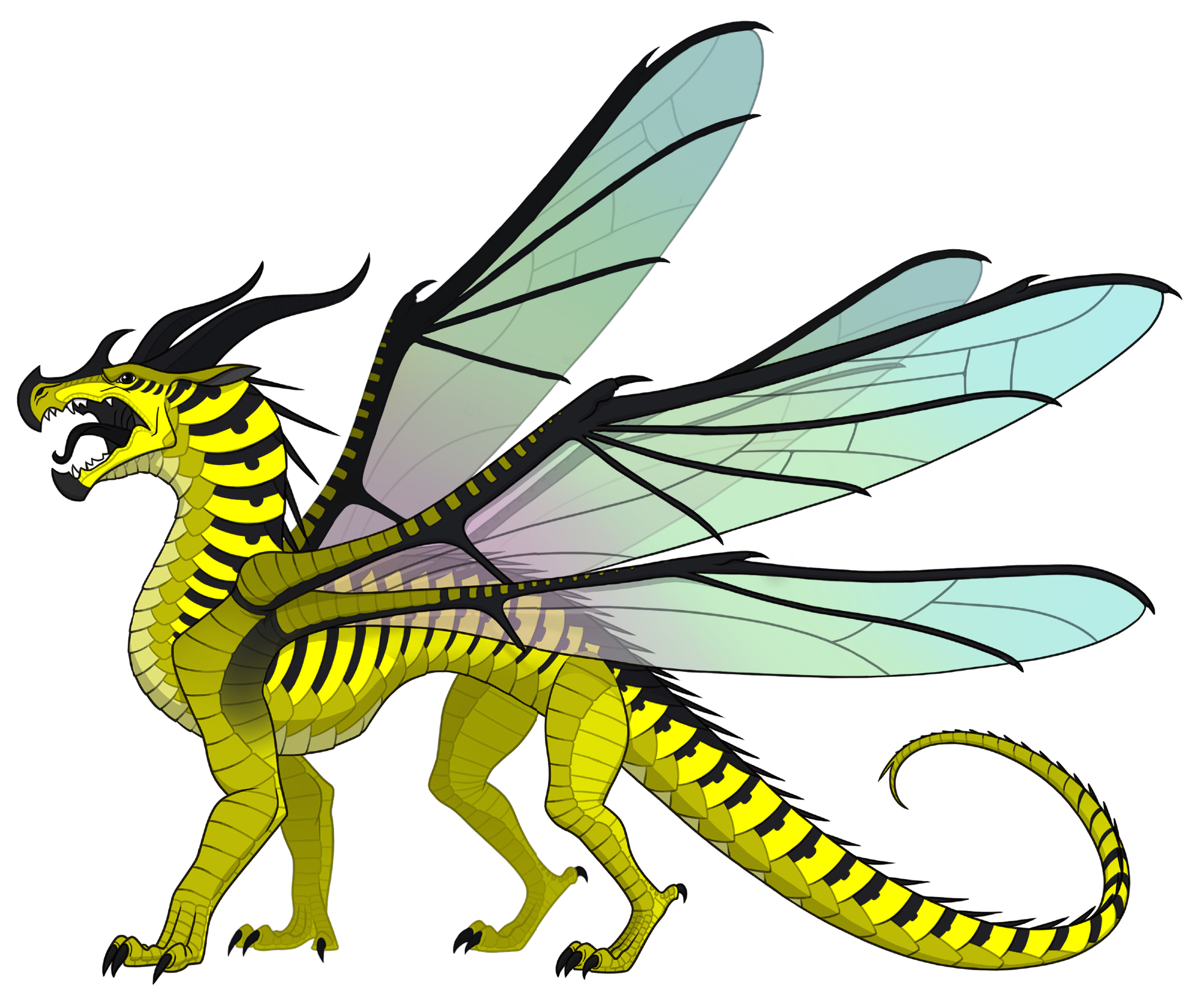 Queen wasp wings of. Insects clipart katydid