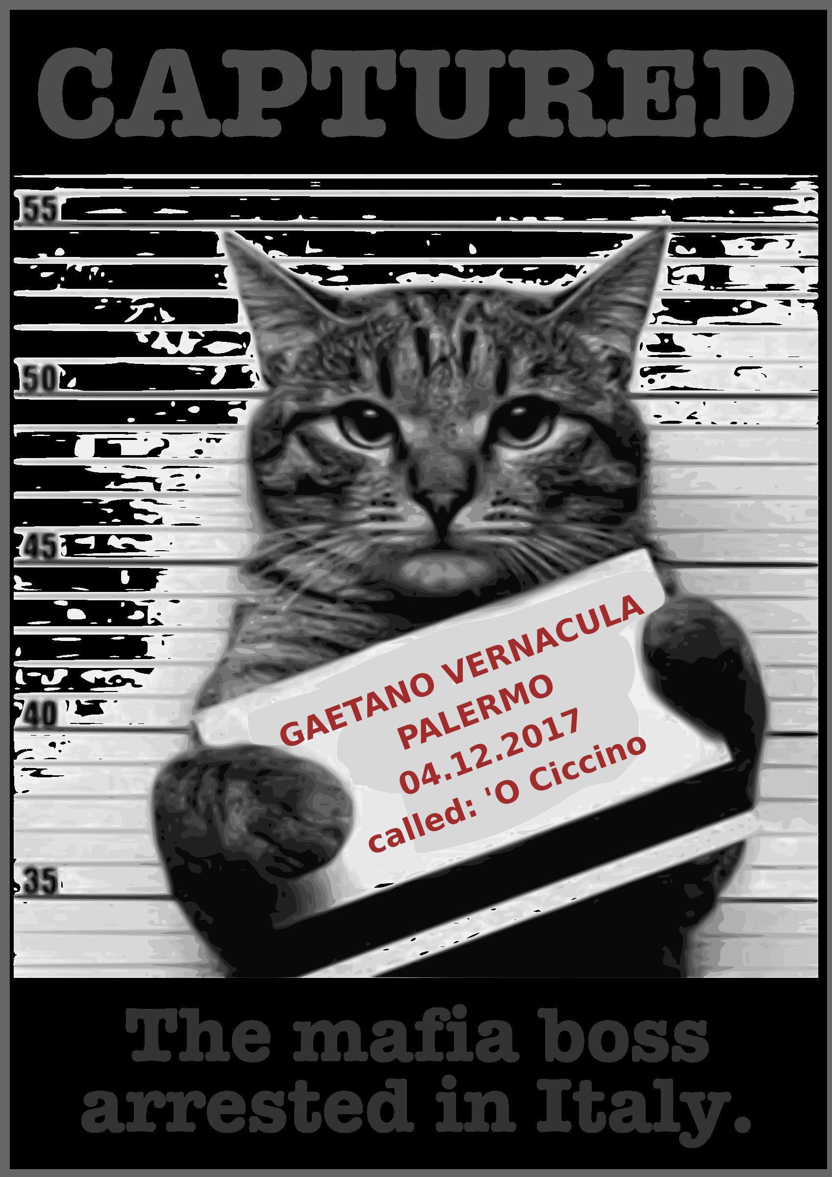 Crime clipart captured. Mafia big image png