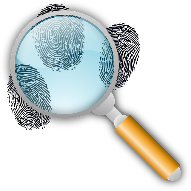 How well do you. Evidence clipart look for clue