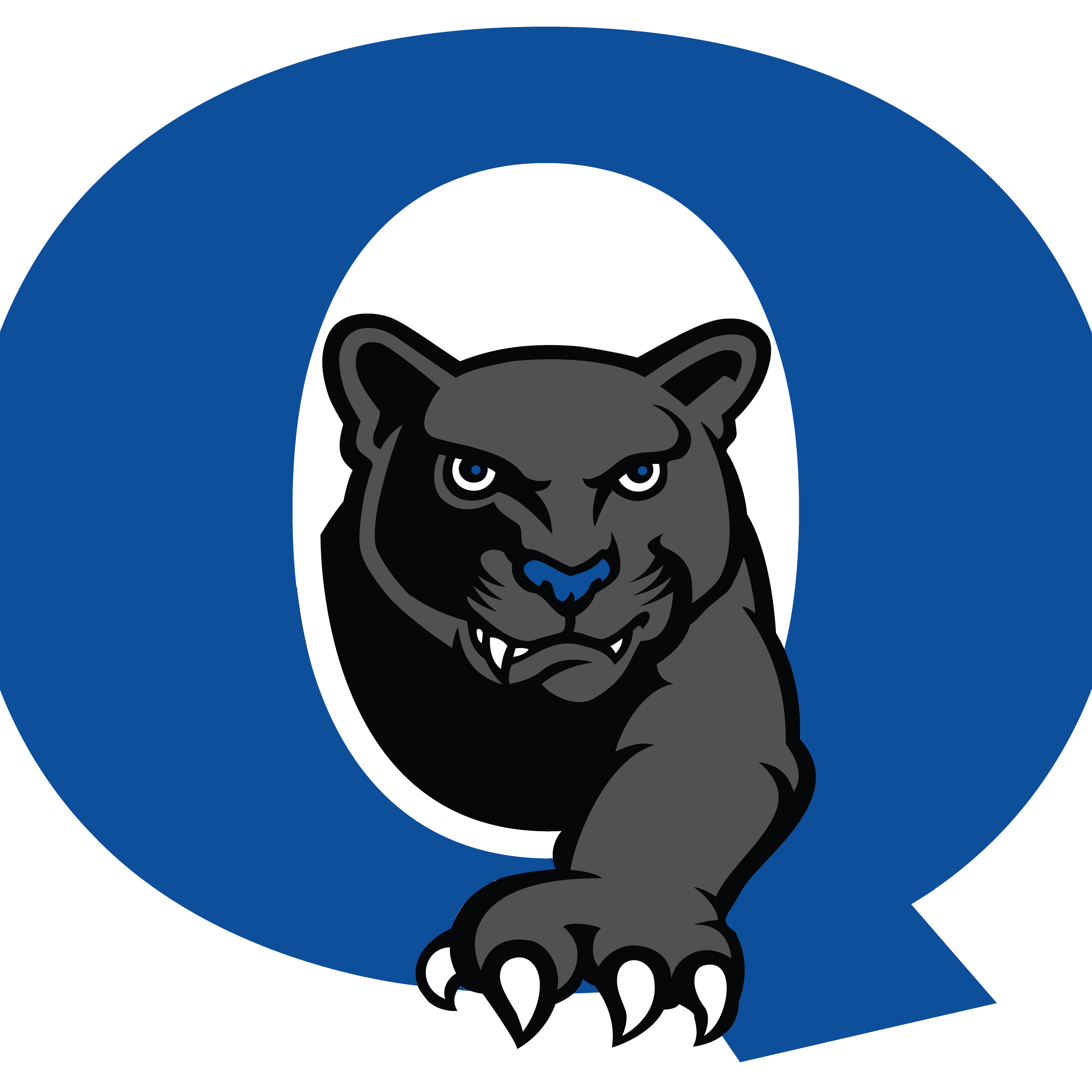 Yearbook clipart panther. Quakertown comm hs on