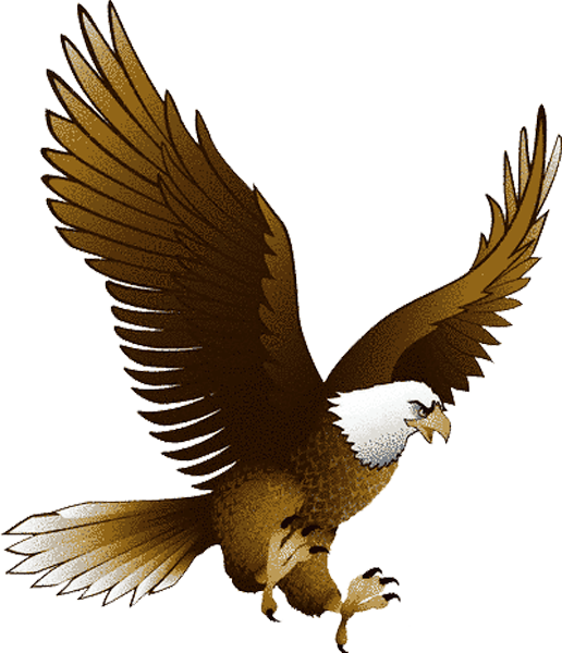 Eagle clipart illustration. A god rebuilt adventure