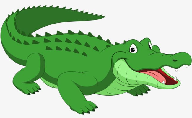 Crocodile clipart. Png nice coloring pages