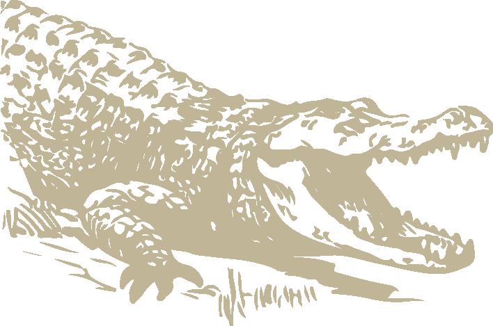 Nest clipart alligator. Attractions jungle gardens monsurat
