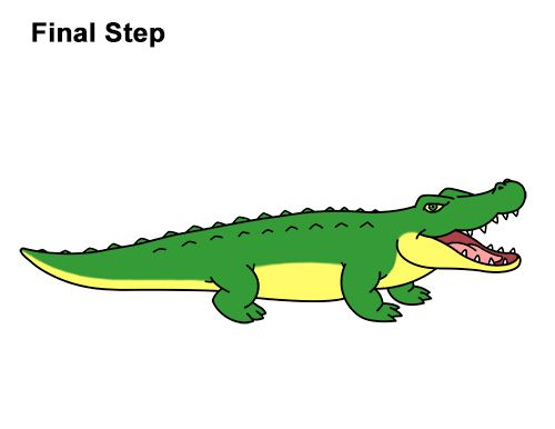 How to draw cartoon. Gator clipart angry