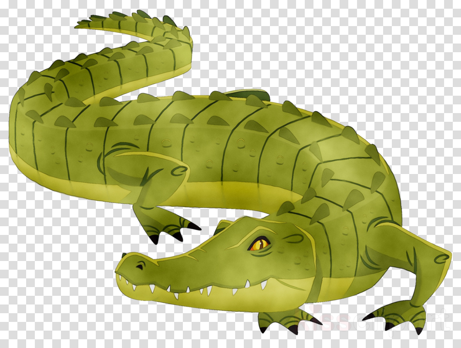 Crocodile clipart croccodile. Alligator cartoon illustration