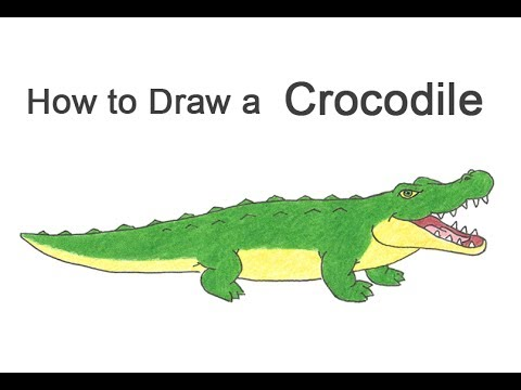 How to draw a. Crocodile clipart simple