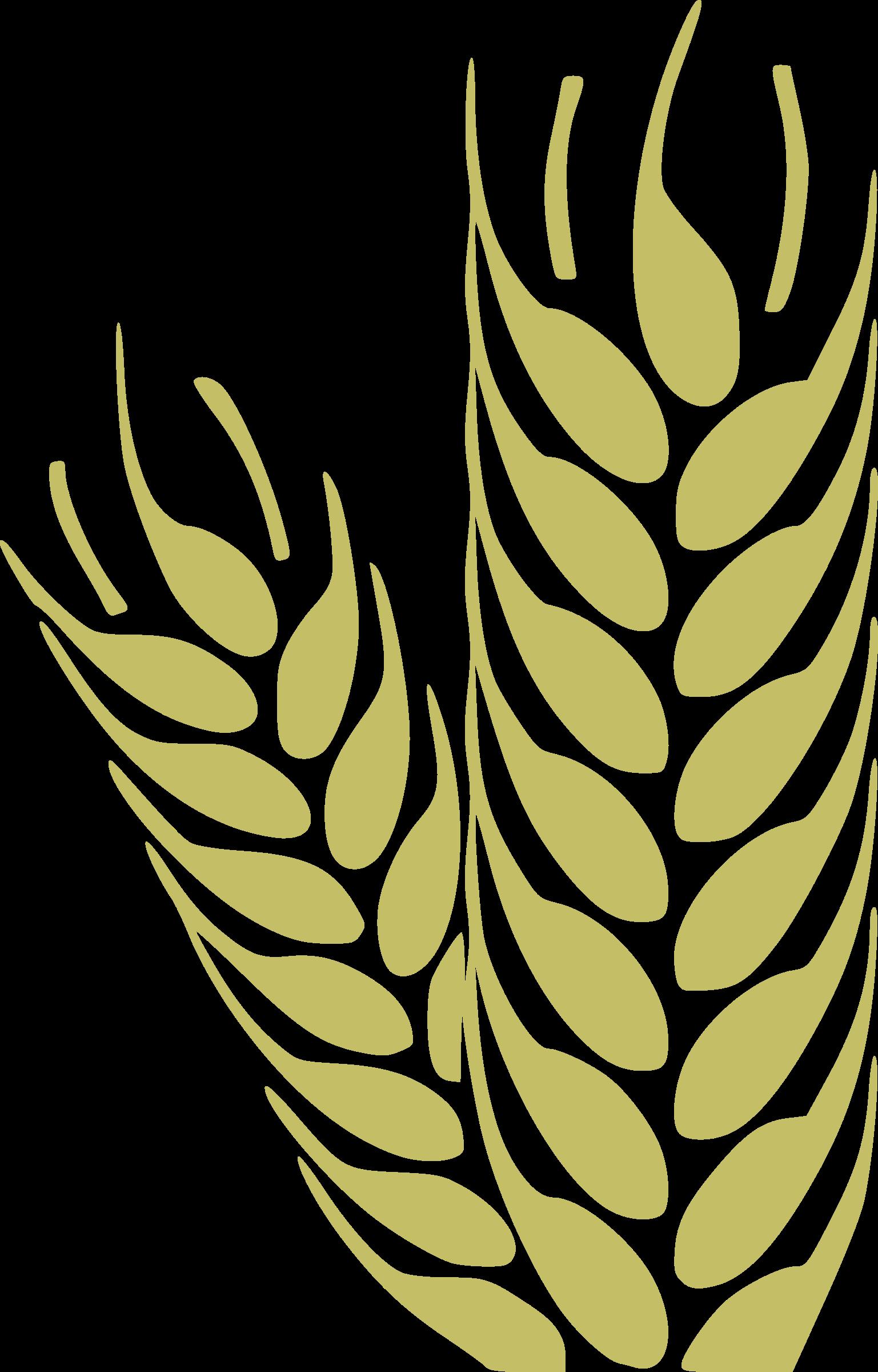 Wheat clipart baisakhi. Trigo icons png free
