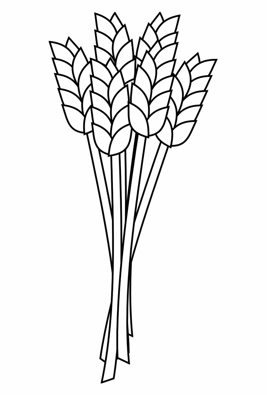 Grain clipart outline. Wheat agriculture crop png