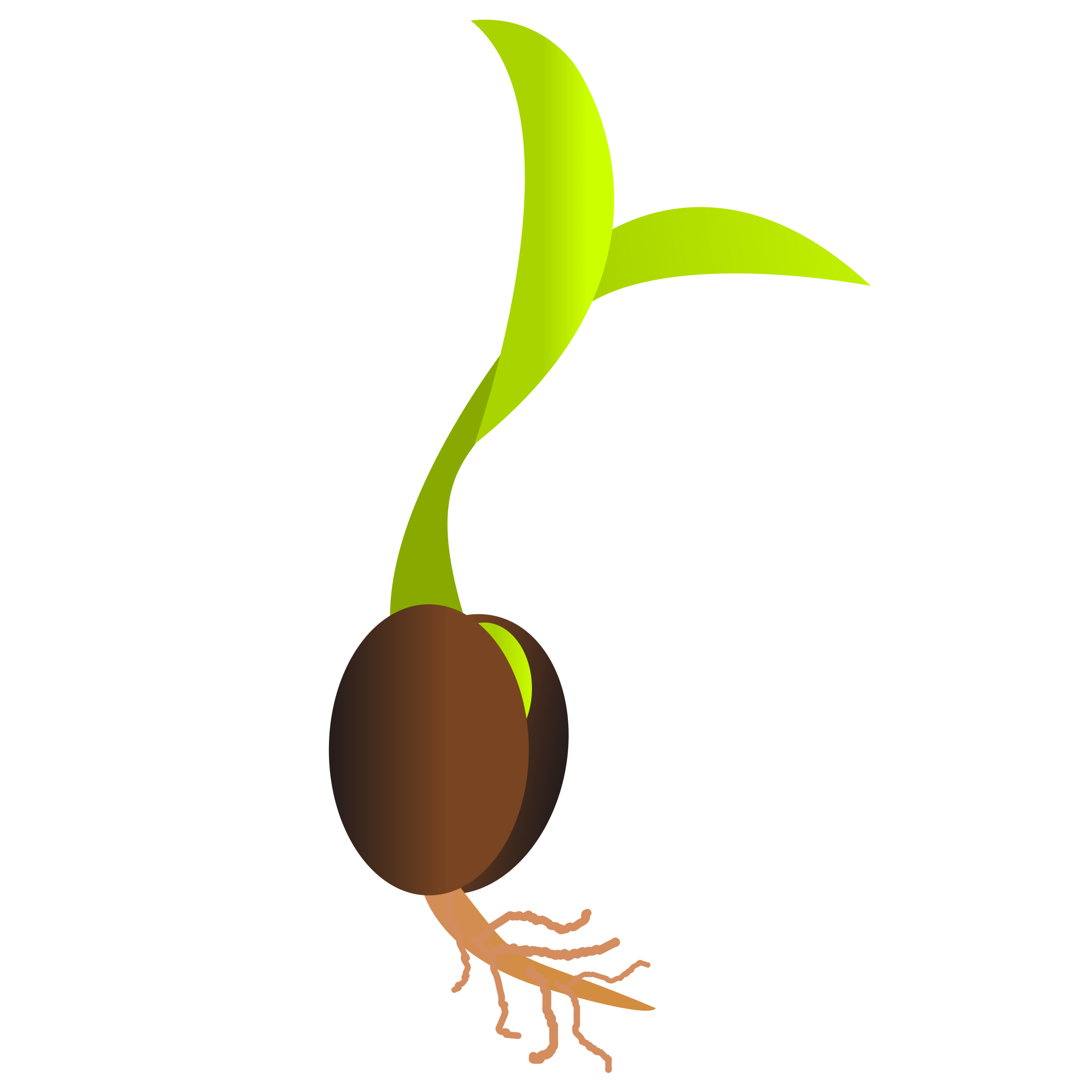 New life a germinating. Gardening clipart plant seedling