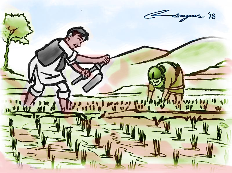 Conservation misperceptions and challenges. Crops clipart early agriculture