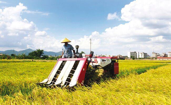 Crops clipart farmer chinese. Down on the farm