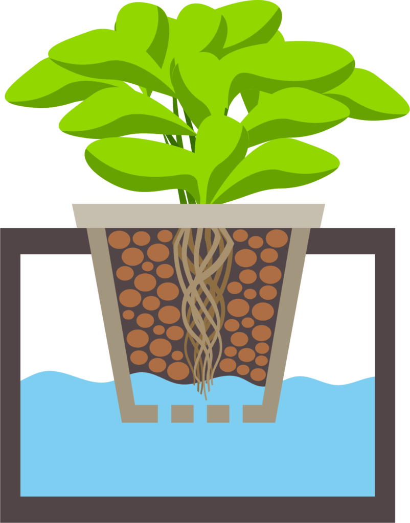 Garden clipart herb garden.  best hydroponics kits