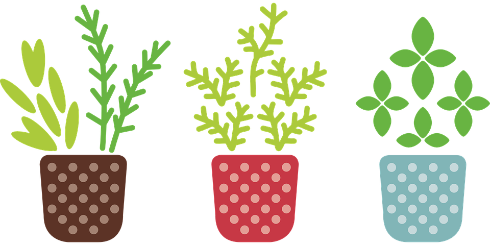 Collection of growing crops. Gardener clipart proper care plant