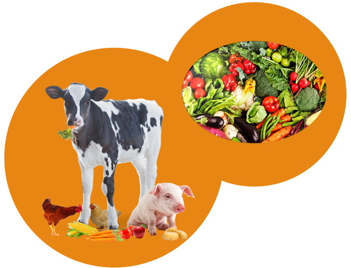Atonu mixed livestock. Crops clipart illustration