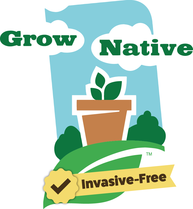 Where to find native. Planting clipart water plant