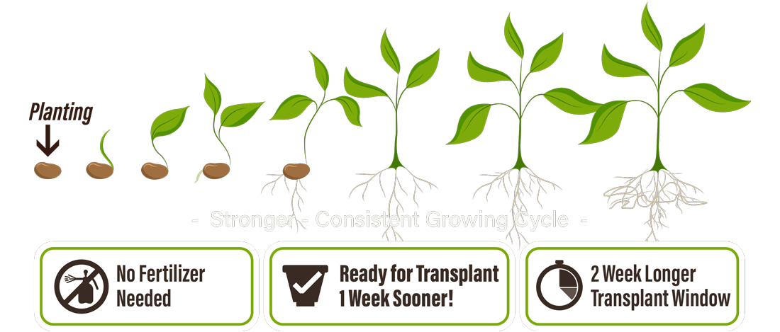 Growth clipart tree sprout. Keystone bio ag greenhouse